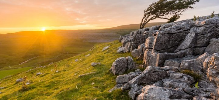 New Biodiversity Recovery Plan Launched in the Yorkshire Dales | The Gamekeeper's Inn